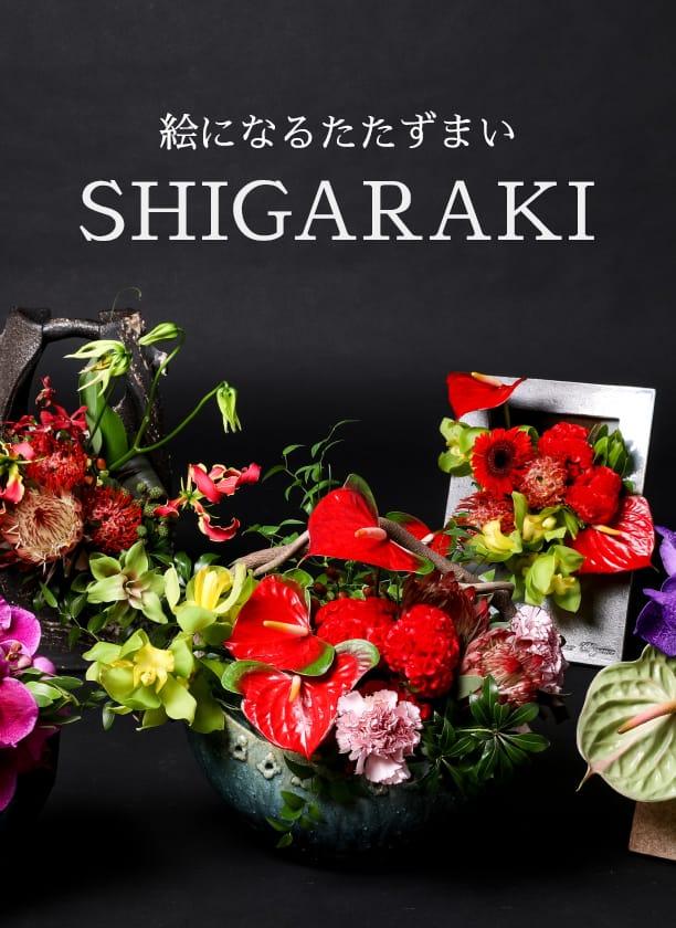 絵になるたたずまい SHIGARAKI