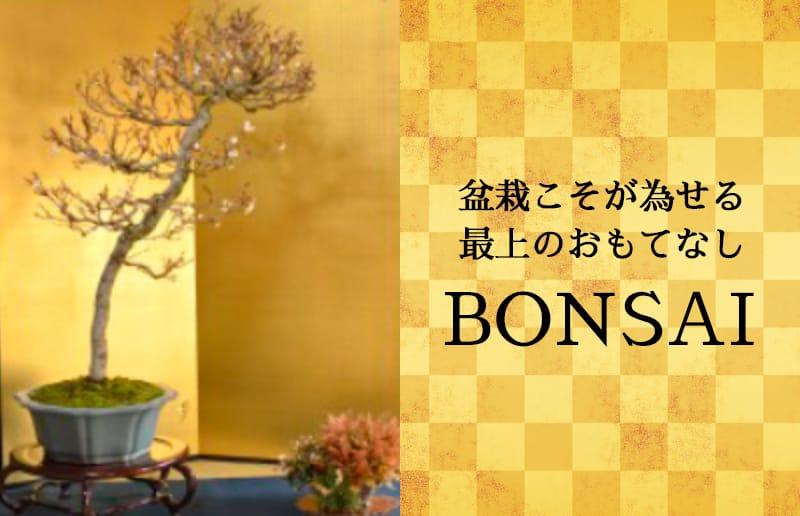 盆栽こそが為せる最上のおもてなし 「BONSAI 盆栽」
