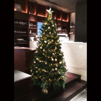 季節の商品_クリスマスツリー